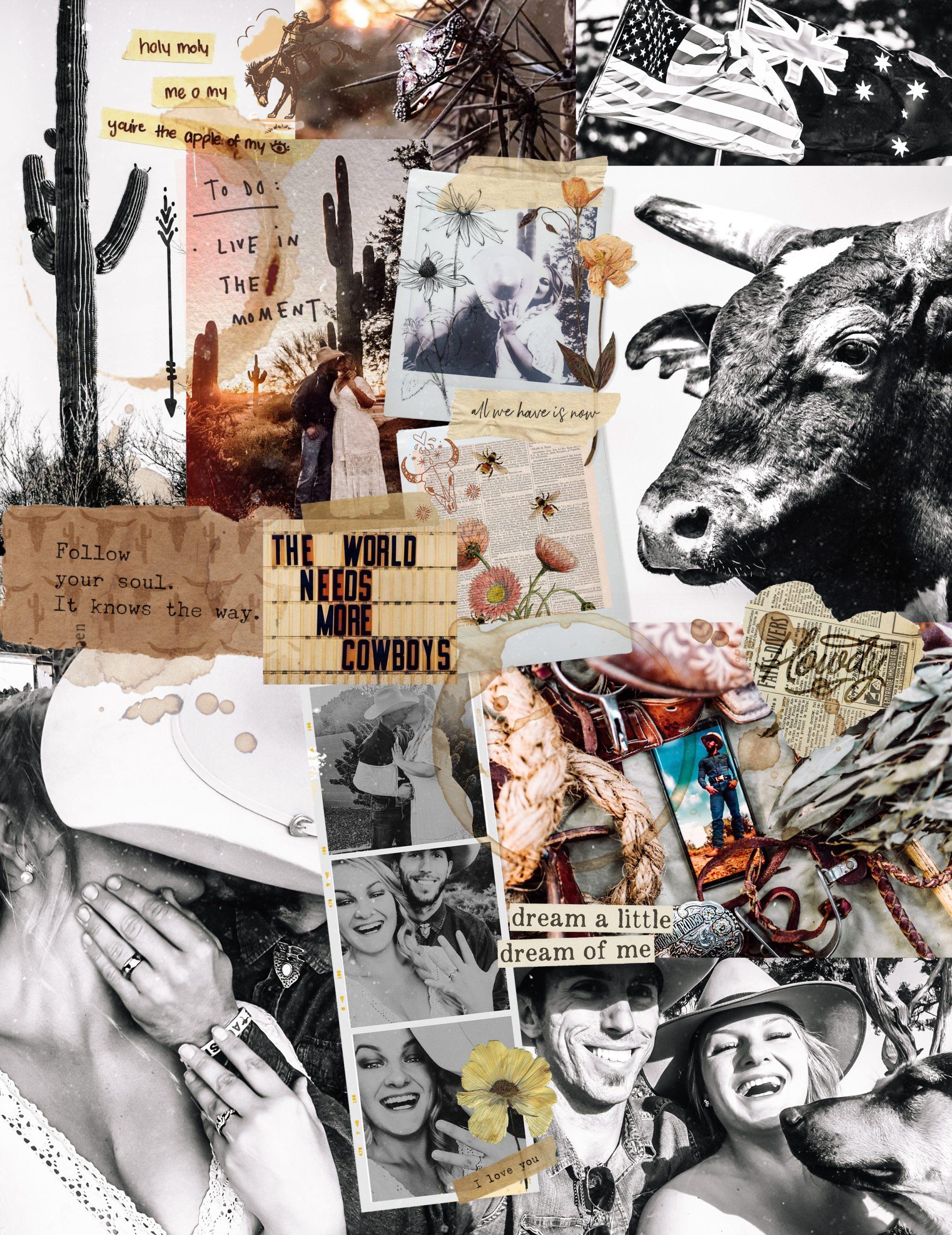 Bulls & Wildflowers